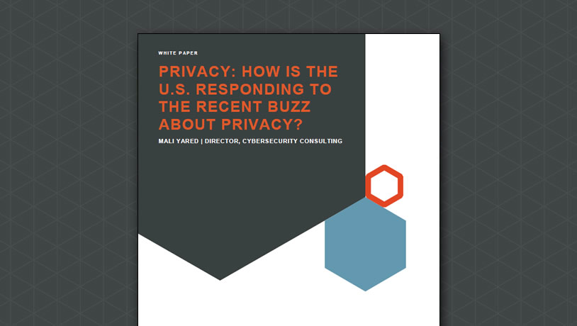 Privacy: How is the U.S. Responding to the Recent Buzz