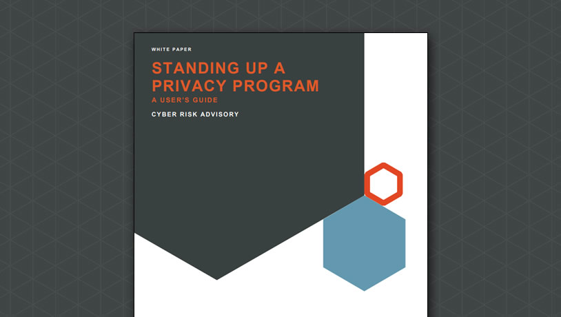 Standing up a privacy program: A user's guide